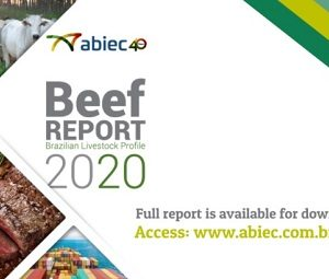 New Beef Report 2020 is available